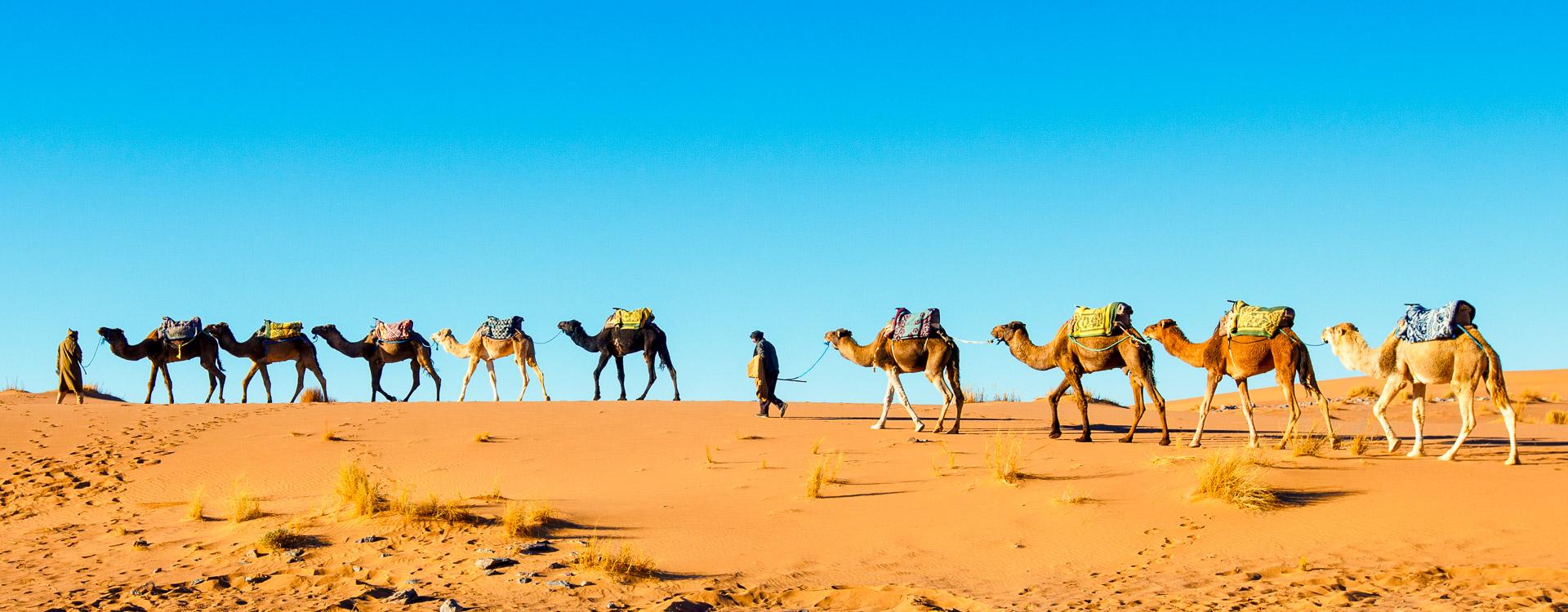 e-bike-reisen-Marokko3.jpg